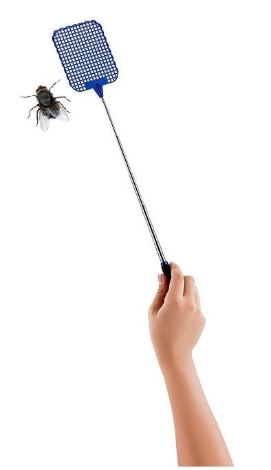 A bug swatter